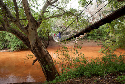 Rivière Ewaso Ngiro au Loisijo lodge, Shompole