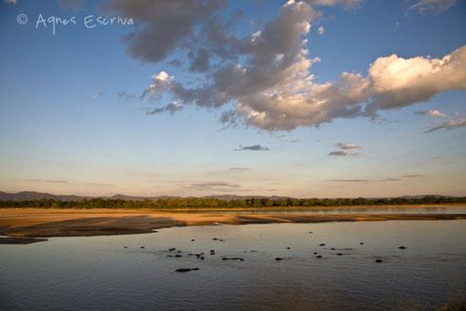 Luangwa et ses hippos