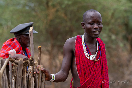 Chef masaï