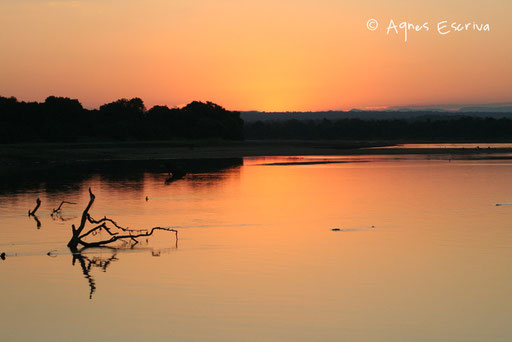 La rivière Luangwa