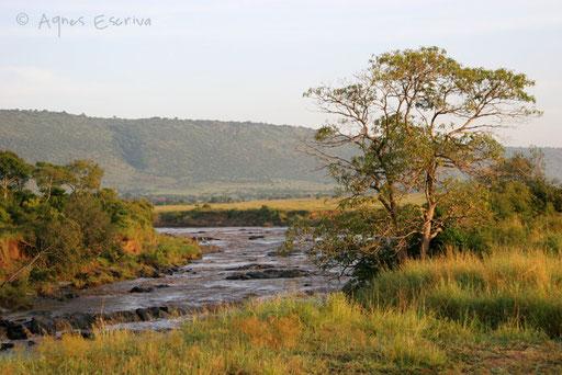 La rivière Mara le matin