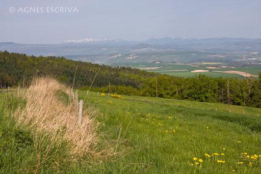 Sur la route d'Issoire au printemps