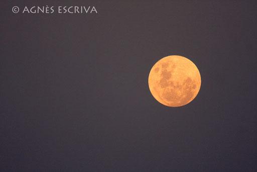 Lune au coucher du soleil