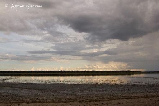 Lac de Ndutu