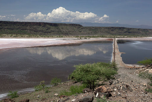 Lac Magadi