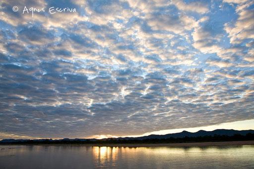 Lever de soleil sur la luangwa