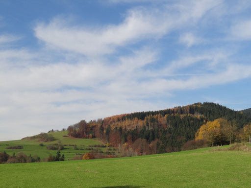 Herrenberg mit Keltensiedlung
