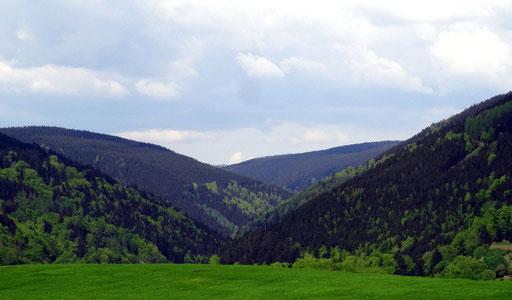 Theuerer Goldgrund mit ehemaliger Freier Bergstadt Steinheid