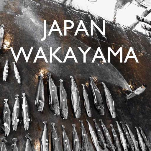 Reisebericht Japan Wakayama Reiseblog