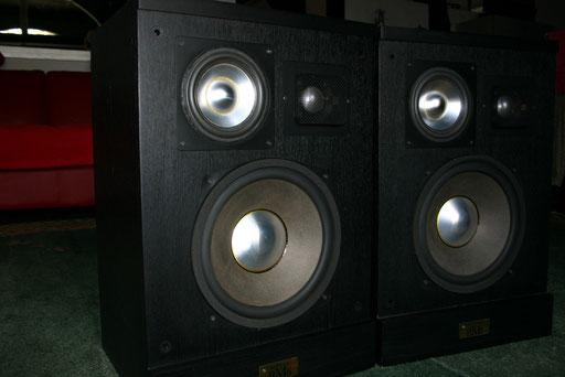 BM6 - in V-FET Technik ein ordentlicher Lautsprecher