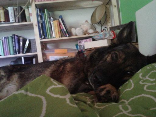 Antonia beim Mittagsschlaf