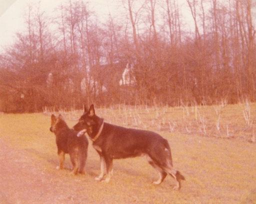 Bac und Gilde