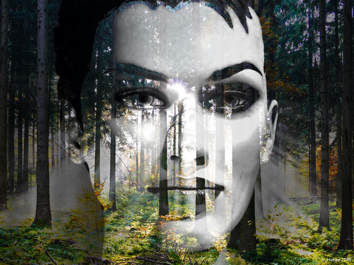 The white face in the forest