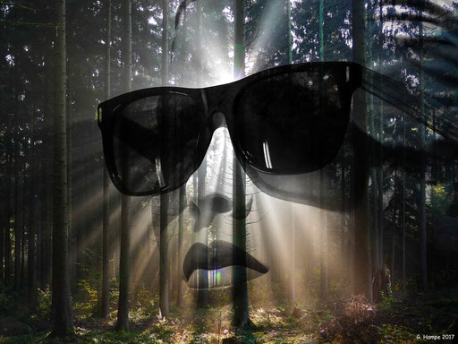 Black sunglasses in the autumn forest