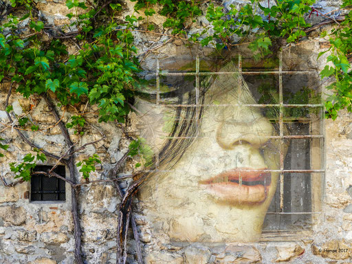 The face inside the wall