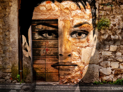 The face with the old wooden door