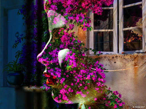 The woman with the bougainvillea