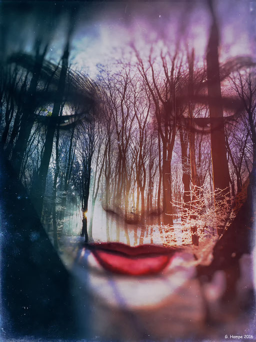 The face in the winter forest