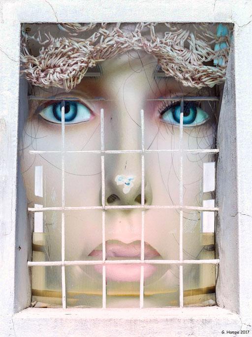 Blue eyes behind the window
