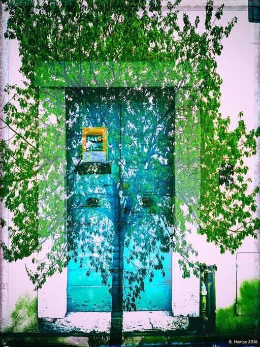 The green tree and the turquoise door