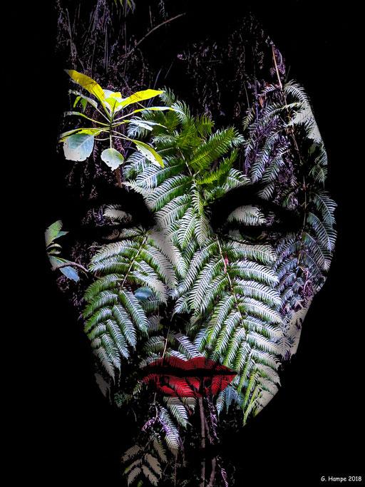 Inside the fern