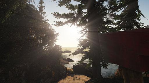 NaturalVision (NVR) Remastered Mod GTA 5 Screenshot 1