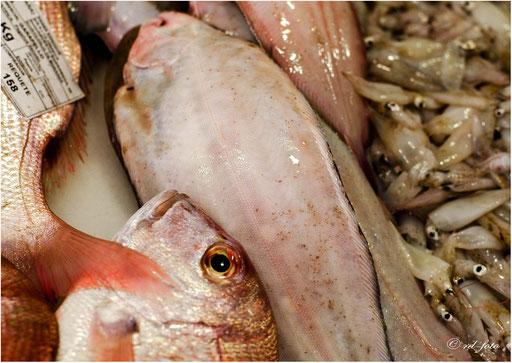 Fischmarkt Cadiz, Spanien