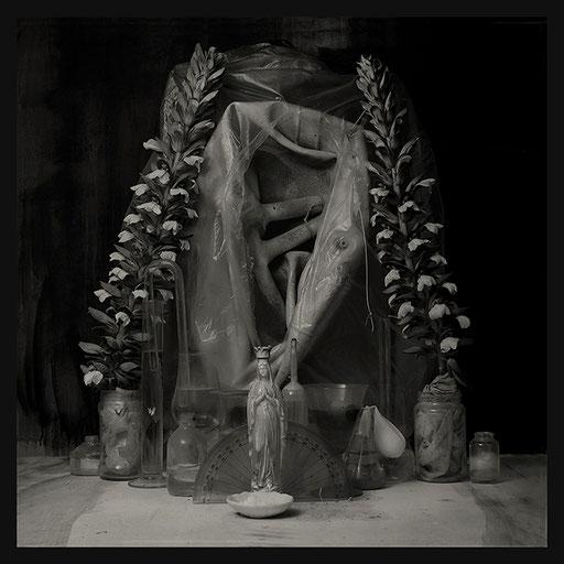 Les Oratoires Domestiques: Grande Peau aux Acanthes, 40X40cm, 2016