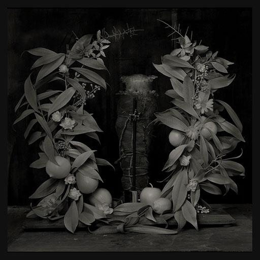 Les Oratoires Domestiques: L'Animal Puni, 40X40cm, 2016