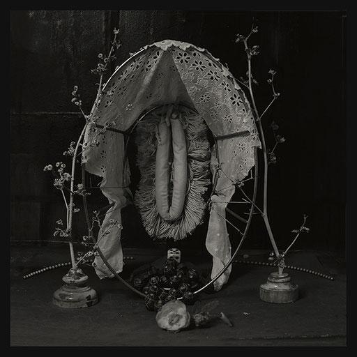 Les Oratoires Domestiques: La Vraie Nénette, 40X40cm, 2016