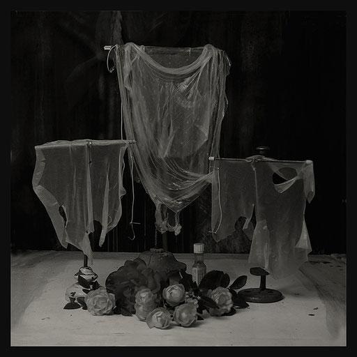 Les Oratoires Domestiques: Trois Peaux de Nem, 40X40cm, 2016