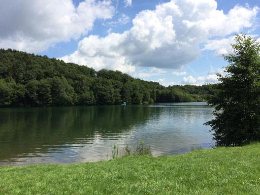Der See war sehr breit und ab und zu sah man einen Schwimmer seine Bahnen ziehen oder Tretboote vorbeischwimmen auch die ein oder andere Entenfamilie war zu sehen