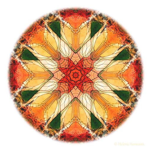 Mandala Nr. 6, Mischtechnik, 2009