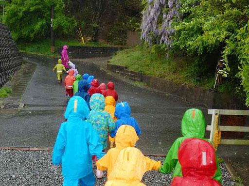 雨の日もカッパを着て森へ出かけます。雨の日にしか出会えない自然がたくさんあります。