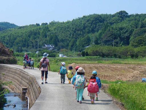 里山の自然に囲まれた中で、毎日の自然体験活動を通して、野外幼児教育を行っています。