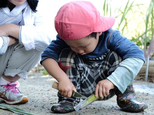 運営母体のNPO法人ふくおか森の学校では、野外幼児教育以外にも、小中学生(幼児・年長を含む)を対象にした自然体験活動を行っています。