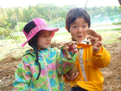 しんぐう里山ようちえんでの活動は、ほとんど毎日野外で自然体験活動を行っています。