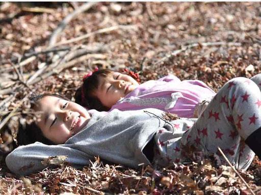 四季折々の自然体験ができる幼稚園。博多駅から車で約30分の糟屋郡新宮町立花口にあります。