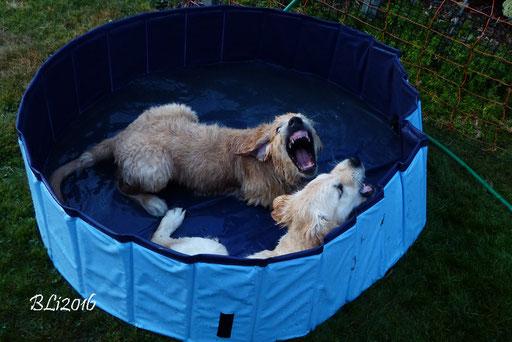 Major und Fanni nehmen ein Bad
