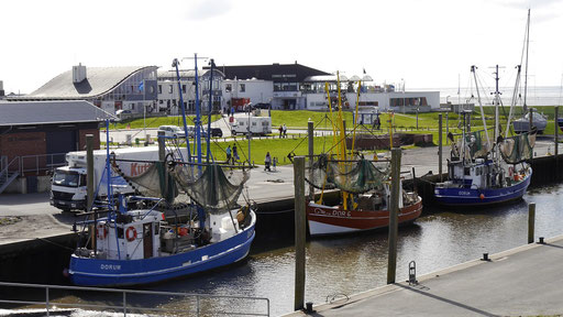 Kutterhafen von Dorum-Neufeld