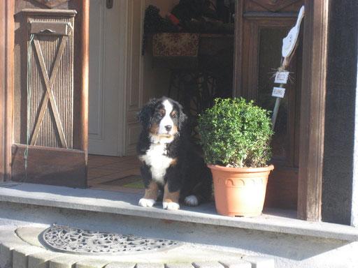 Gershwin vor seiner Haustür