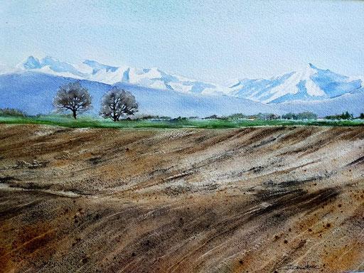 Les Pyrénées vues de l'Astarac dans le Gers 2021*  26x36