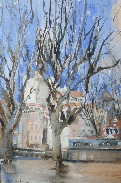 25-Narbonne n°15 Etude Quai Mirabeau 19x29 * (2011)