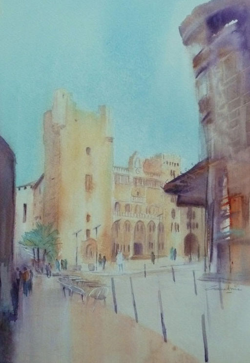 16-Narbonne n°6 Hôtel de ville 23x34 collection privée (2011)
