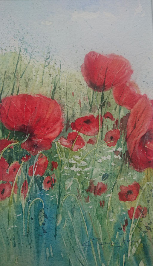 Coquelicots n° 9 13x23 Collection privée