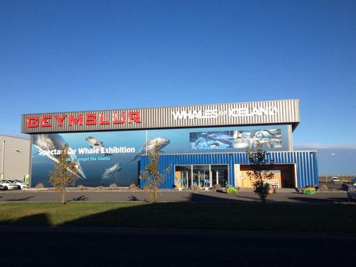 Musée de la baleine devant mon bureau