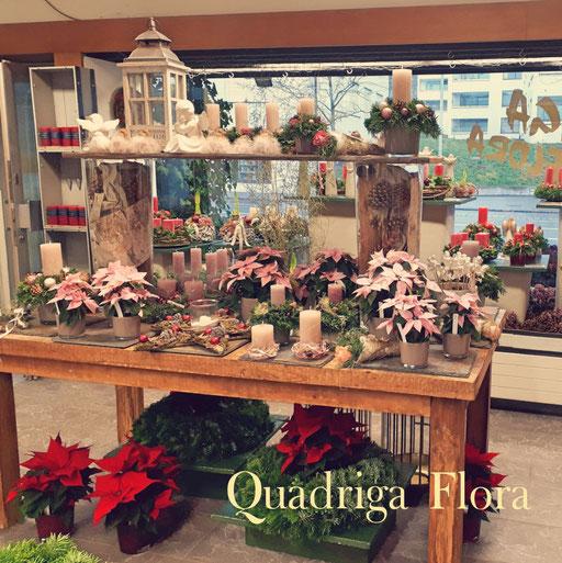 Adventsausstellung im Blumengeschäft Quadriga Flora.
