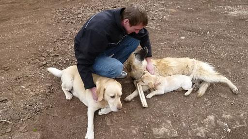 Auch Chregu hat sich schnell mit den Hunden von Fritz angefreundet