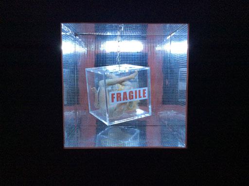 Fragile. scatola di legno cm.30 x 30 x 30. Galleria senza Limite, Colle Val D'Elsa (SIENA)