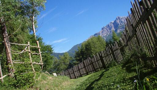 Montagne parco naturale Fanes Sennes ( Val Badia ) Braies + Naturpark Berge Pragser Dolomiten